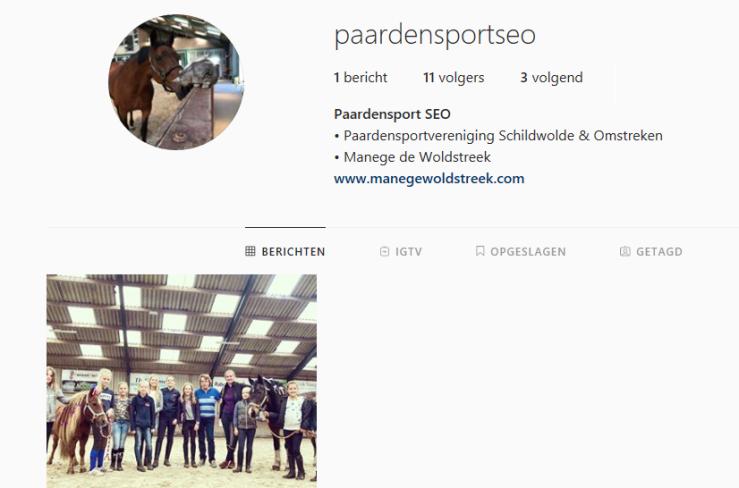 paardensport seo instagram